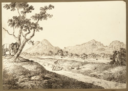 View of hills from the camp at Dhiri (Bihar); two elephants under a tree. 22 December 1824